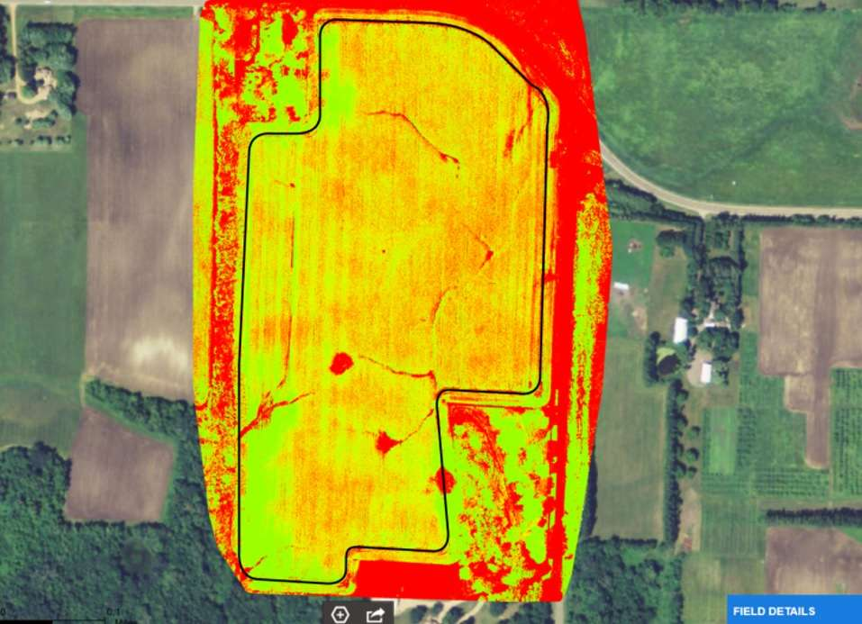 NDVI surveys